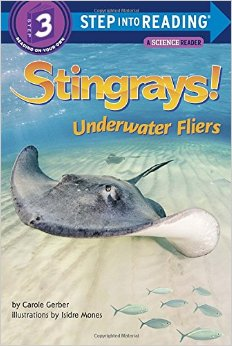 Stingrays: Underwater Fliers